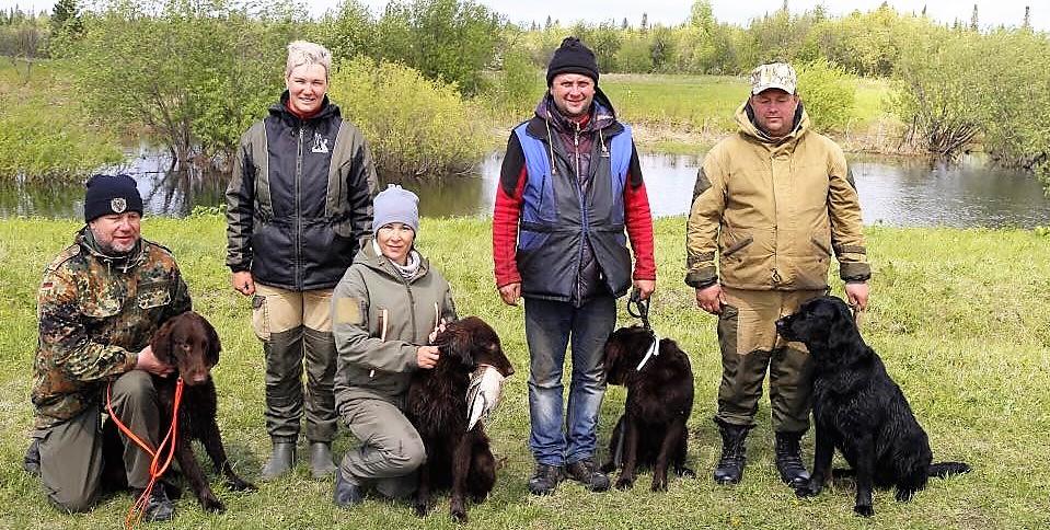 Дрессировка собак в Томске